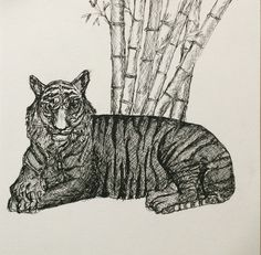 Tiger Tiger Burning Bright -   Pen and Ink Crosshatching  Tiger Art