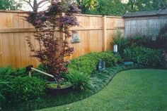 Amazing Landscape Fence #5 Landscaping Along Privacy Fence Ideas ...