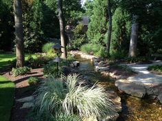 704-816-0526 Charlotte 864-381-7663 Greenville and Asheville Platinum Ponds and Lake Management #pondmanagement Pondless waterfall in in Greenville SC.  platinumponds.com