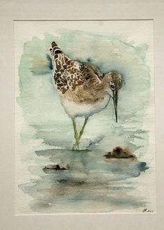 Watercolor Feather, Watercolor Trees, Watercolor Animals, Watercolor Landscape, Watercolor Paintings, Watercolor Artists, Watercolor Portraits, Abstract Paintings, Watercolors