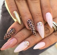 Cheetah, Pale pink, Mocha, and gold
