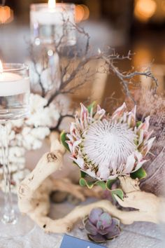 Beachy inspired table decor with proteas, driftwood and coral: http://www.stylemepretty.com/florida-weddings/naples-fl/2015/08/19/romantic-yacht-club-wedding/ | Photography: Hunter Ryan Photo - http://hunterryanphoto.com/