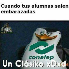 Memes de:  El Brayan El Kevin El Brandom La Kimberly  Etc  El conteni… #detodo # De Todo # amreading # books # wattpad
