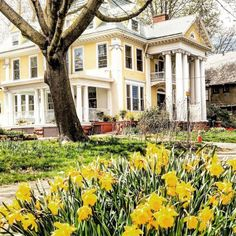 Shabby Chic Homes Yellow Cottage, Ga In, Hearth And Home, Shabby Chic Homes, Southern Belle, Daffodils, Cottage Style, Beautiful Homes, Exterior
