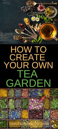 How to create your own tea garden with ideas on what to plant and other design resources growing your own tea has never been easier and you ll save money at the same time teagarden teagardenplants teagardendesign herbalgarden how to save seeds Unique Garden, Herb Garden Design, Organic Gardening, Gardening Tips, Vegetable Gardening, Gardening Shoes, Beginners Gardening, Kitchen Gardening, Gardening Courses