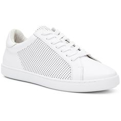 Witchery Leah Perforated Sneaker (90 AUD) ❤ liked on Polyvore featuring shoes, sneakers, real leather shoes, perforated leather sneakers, perforated sneakers, perforated shoes and leather shoes