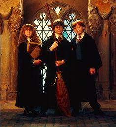 Harry Potter, Ronald Weasley and Hermoine Granger