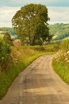 Farmland Road deciduous trees hills Country lane (no location given) by Dave Edmonds Beautiful Roads, Beautiful Landscapes, Beautiful Places, Beautiful Pictures, Country Life, Country Roads, Landscape Photography, Nature Photography, Country Landscaping