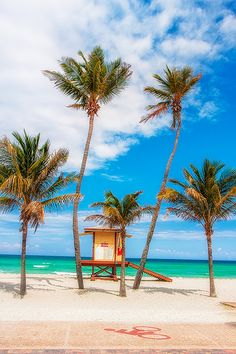 Lifeguard House and Palm Trees, Hollywood, Florida Best Beach In Florida, Places In Florida, Florida Vacation, Florida Beaches, South Florida, Palm Beach, Beautiful Places In California, Most Beautiful Beaches, Beautiful Places To Visit
