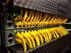 Excellent install into Cisco switches. Neat-Patch Install