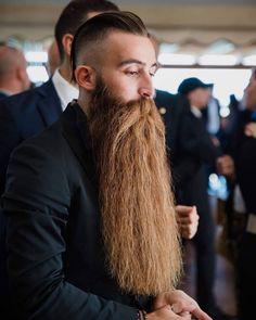 Beard Styles For Men, Hair And Beard Styles, Long Hair Styles, Walrus Mustache, Beard No Mustache, Grey Beards, Long Beards, Hairy Men, Bearded Men