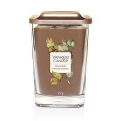 6 X Bourgogne Tea Lights bougie parfumée 4 Hr Burn Temps
