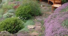 SG The Hillside Retreat Significant changes in elevation are often consider. SG The Hillsi Joanna Basford, Johanna Basford Secret Garden, Garden Leave, Beautiful Gardens, Enchanted, Felt, Child, Joy, Outdoor Decor