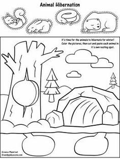 Preschool coloring pages hibernation crafts Thema Winter Im Kindergarten, Kindergarten Science, Preschool Winter, Winter Activities, Classroom Activities, Artic Animals, Hibernating Animals, Preschool Crafts, Kids Crafts