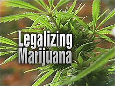USA — The Berlin Wall of pot prohibition seems to be crumbling before our eyes.    By fully legalizing marijuana through direct democracy, Colorado and Washington have fundamentally changed the national conversation about cannabis. As many as 58 percent of Americans now believe marijuana should be legal. And our political establishme