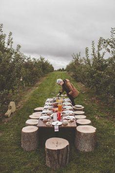 Picnic, campo, banquitos de tronco y jugos ricos? Acepto.