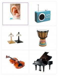 Five Senses Wheel Five Senses Preschool, Body Preschool, Senses Activities, Free Preschool, Preschool Worksheets, Preschool Activities, Speaking Games, Kids Pages, Toddler Crafts
