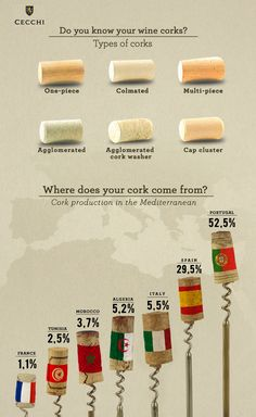 You can not discuss wine without mentioning the cork as it is part of the history of wine Wein Parties, Wine Facts, Wine Chart, Wine Folly, Wine Vineyards, Wine Education, Wine Tasting Party, Wine Down, Wine Guide