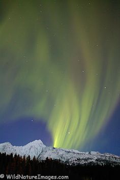 How to Photograph the Aurora Borealis - Northern lights - Photo Blog - Niebrugge Images