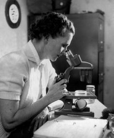 Rachel Carson, 1951. Credit Brooks Studio, from the Rachel Carson Council.