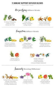 These essential oil diffuser blends for cold and flu season will help boost immunity, purify the air, and alleviate congestion.