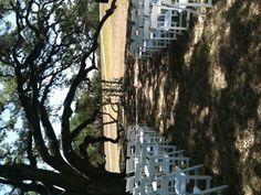 the wedding alter under the big oak tree, bifold french doors with wild smilex