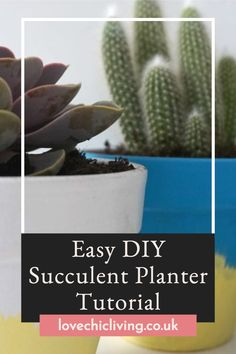Create your own succulent planters with these easy DIY tutorials! We all love unique indoor plant pots, so why not design your own! Learn how to paint terracotta pots and design your own succulent planters that will be unique to your home! #lovechicliving Succulent Planter Diy, Diy Planters, Succulents Diy, Indoor Plant Pots, Potted Plants, Lawns, Terracotta Pots, Learn To Paint, Lawn And Garden