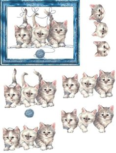 Trio of Kittens 3d Paper Crafts, Cat Crafts, Paper Art, Image 3d, 3d Sheets, Kittens And Puppies, 3d Cards, Card Patterns, Animal Cards