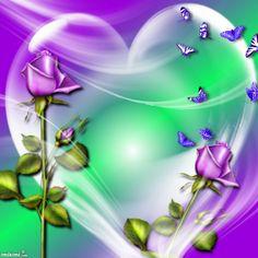 purple rose-lissy005