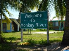Monkey River, Placencia Belize