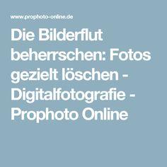 Die Bilderflut beherrschen: Fotos gezielt löschen - Digitalfotografie - Prophoto Online