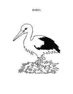 Materiale didactice - invatamant prescolar added a new photo — with Edith Hunyadi. Kindergarten Worksheets, Rooster, Snoopy, Bird, Children, Fictional Characters, Animals, Type 3, Diana