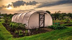 <p>Urban agriculture is a high-level initiative in the city of Detroit. In the last few years, the number of urban farms has grown (pardon the pun),…
