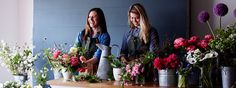 Holex Insights: Inspiring tutorial for florists | Command Cupid - The movie | New Arrivals
