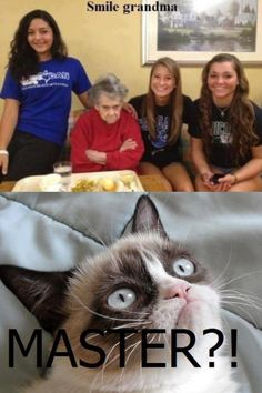 Gurmpy cat had to learn from someone to be grumpy wouldn't he