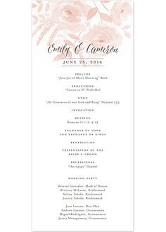 sample of invitation program