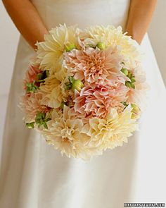 Dahlia Bouquet Perfect for the late-summer bride, a bouquet of Cafe au Lait dahlias could easily be culled from your own garden. Dahlia Wedding Bouquets, Dahlia Bouquet, Pastel Bouquet, Bride Bouquets, Floral Bouquets, Wedding Flowers, Chrysanthemum Bouquet, Spring Wedding, Dream Wedding