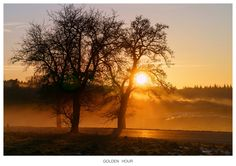 GOLDEN HOUR by Norbert Reimer on 500px