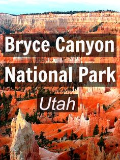 Bryce Canyon National Park, Utah in 12 Photos: http://www.ytravelblog.com/12-photos-of-bryce-canyon-np/