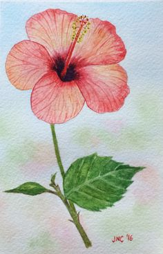 #WorldWatercolorGroup - Watercolor painting of pink flower by Tamz Canete - #doodlewash