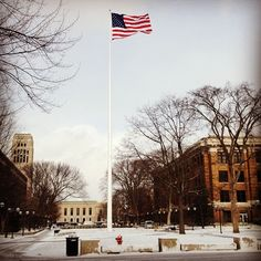 Snowy day on campus for the Inauguration and MLK Day #campuslife #umich #uofm #instagram