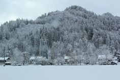 After the snow storm, Winter Wonderland in Allgäu, Germany #alps#nature#outdoor