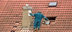 Does your roof need to be repaired?