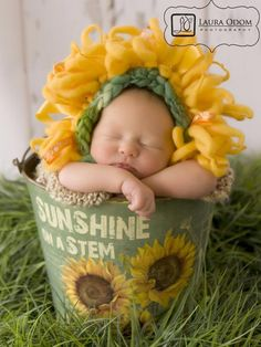 Sunflower headbands for little ones! Cute Kids, Cute Babies, Baby Kids, Baby Baby, Baby Pictures, Baby Photos, Sunflowers And Daisies, Happy Flowers, Sun Flowers
