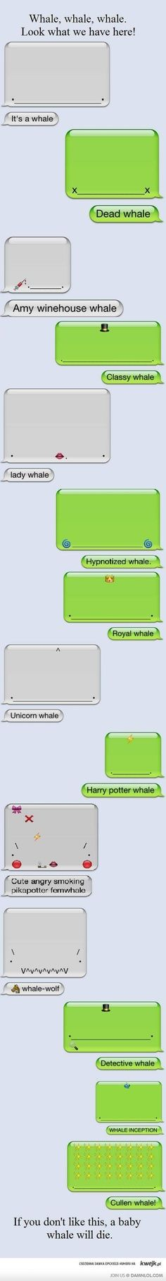 Who wouldn't. His is frieking funny and I don't want a whale to die