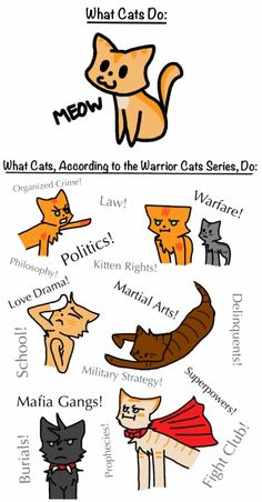 What Cats Do...there smaller versions of humans <<<pinning for that truth