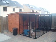 shed with mesh run on side roofed , . shed with mesh run on side roofed , shed with mesh run on side roofed , Dog Kennel Roof Ideas Outdoor Sheds, Outdoor Dog, Outdoor Spaces, Bob Marley, Cat House For Sale, Dog Kennel And Run, Dog Enclosures, Cheap Dog Kennels, Dog Kennel Designs