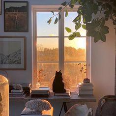 Bedroom Inspo, Bedroom Decor, Dream Apartment, Aesthetic Bedroom, Scandinavian Home, Dream Rooms, My New Room, Home Interior, My Dream Home