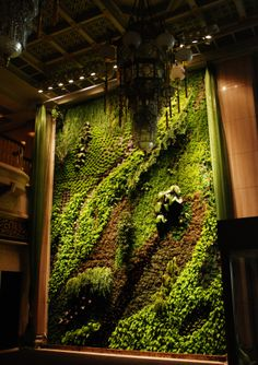 Butterfly Dance, Plant Wall, National Theater, Taipei.