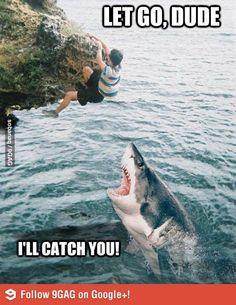 Sharks are so misunderstood..,